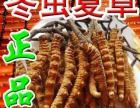 盐城市回收冬虫夏草(海参)燕窝(同仁堂南京公司)