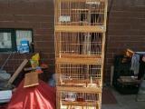 出售玉鸟繁殖笼子