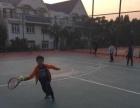 专业少儿网球培训暑假班