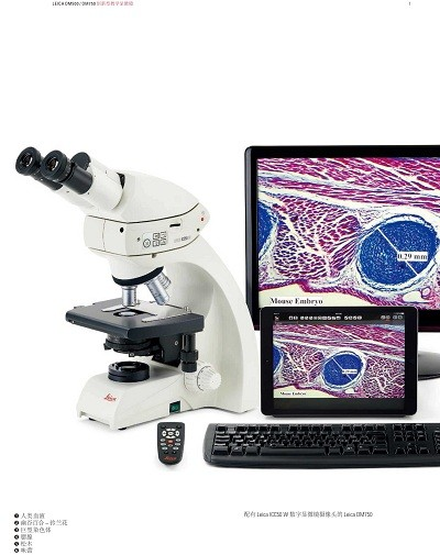 DM500显微镜