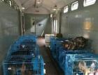 广佛专业办理宠物托运(火车航空汽车)