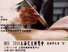 MES国际中医艾灸理疗及艾灸仪器加盟博览会(弘扬艾灸文化)
