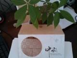 上海松江贺卡激光切割,红包,包装盒激光镂空花纹加工