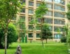 兰州办公室绿植养护、园林设计、绿化管护 价格优惠