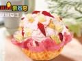 冰淇淋加盟 经营品种多,五大系列
