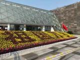 北京宣武綠植租擺