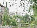 国贸附近 中海安德鲁斯庄园 5室3厅 豪华装修 临水系 拎