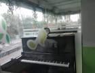 深圳公明钢琴导教育到学上教育
