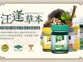 汪逢草本专注研发20年,终于成就了泰国第一青草药膏品牌