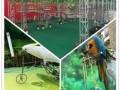 济宁市有没有马戏团表演的