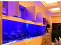 常州嵌入式鱼缸定做定做大型有机玻璃鱼缸 海洋馆 水族馆工程