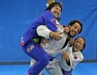 巴西柔术MMA综合格斗散打泰拳拳击ITF跆拳道