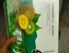 陕西眉县优质猕猴桃