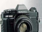 海鸥数码照相机 海鸥数码照相机加盟招商