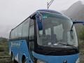 宇通 旅游团体客车 新到2010年高配37座宇通