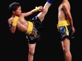 苏州少儿武术培训,科学化培训提高孩子的身体协调性