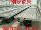 石家庄厂家直销1.7米大棚苗床网 安装育苗床 热镀锌网片