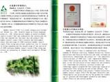 纺织新纤维 Lyocell竹浆莱赛尔短纤维水刺无纺布面膜基材