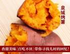 烤薯加盟费用多少钱