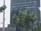 徐汇办公园区,固定3万人办公,招快餐,大食堂,蒸菜等!