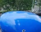 空间暖暖的鲸鱼岛乐园展览出租啦 鲸鱼岛出租