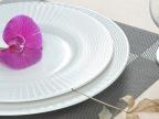 厂家批发 特价产品餐具盘 大号盘 带条纹餐具 陶瓷盘 可加LOGO