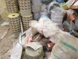 安阳食品袋回收,安阳报废塑料卷膜回收公司,塑料颗粒加工