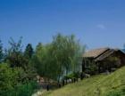 黄山太平湖边洋房会所建筑面积2000平方占地15亩