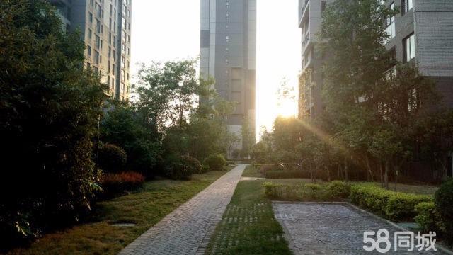 湖滨路 建业桂园成本价出售有暖气学区房 3室 2厅 90平米