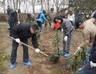 上海员工团建好去处长岛庄园春季团建绿色植树+娱乐+拓展活动