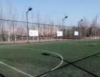 中国梦少儿青训足球俱乐部
