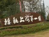 上海南汇 嘉兴平湖新埭张江长三角科技城独栋标准厂房出售