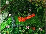 仿真植物墙,仿真桃花树