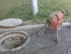 宝山区下水管道疏通清洗欢迎来电咨询