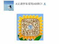 深圳东莞惠州汕尾韶关增驾大车A1A2A3B1B2牌