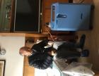青岛医用氧气瓶罐出租灌气充气制氧机吸氧机出租业务