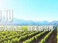 【O:TU葡萄酒】加盟官网/加盟费用/项目详情
