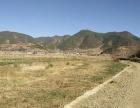 云南省丽江市宁蒗县红桥乡12亩设施农用地转让