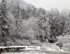 2018元旦庐山观雪景 赏雾凇 打雪仗 迎新年欢乐