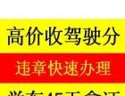 快速办理广东车在全国交通罚款 外省违 章咨询!