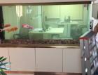 深圳地区上门鱼缸护理鱼缸出售,品牌鱼饲料出售