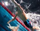 全年游泳成年人培训(斯威敏 宁波)