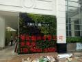 深圳福田车公庙办公室租花服务注意事项是怎样的?哪家服务专业?