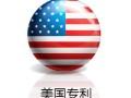 美国专利申请,美国发明专利申请