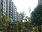 精装单间,高楼层视野好,安静位置,东晖广场,枋湖客运车站附近