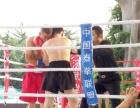 专业散打、mma综合格斗、女子防身术、增肌塑形、威斯曼搏击