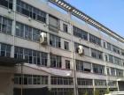 瓯北厂五星工业区一楼1000层高6米、适合各行业