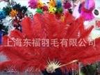 南非进口鸵鸟毛扇大红色舞蹈扇 日本舞蹈扇