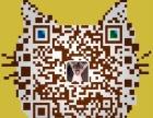 出售高品质暹罗猫幼猫权威认证 健康有保