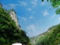 黄果树、龙宫、旅游五菱宏光商务车带司机出租